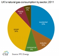 Cheap coal imports make share of UK gas power generation plunge by 32% in 2012 - EIA