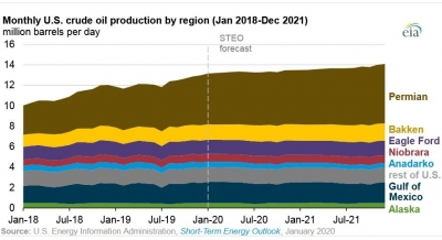 U.S. oil and related gas production to grow more slowly through 2021