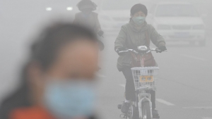 North China cities choked by smog