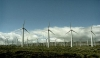 Scottish Power's Whitelee wind Farm currently has 215 turbines